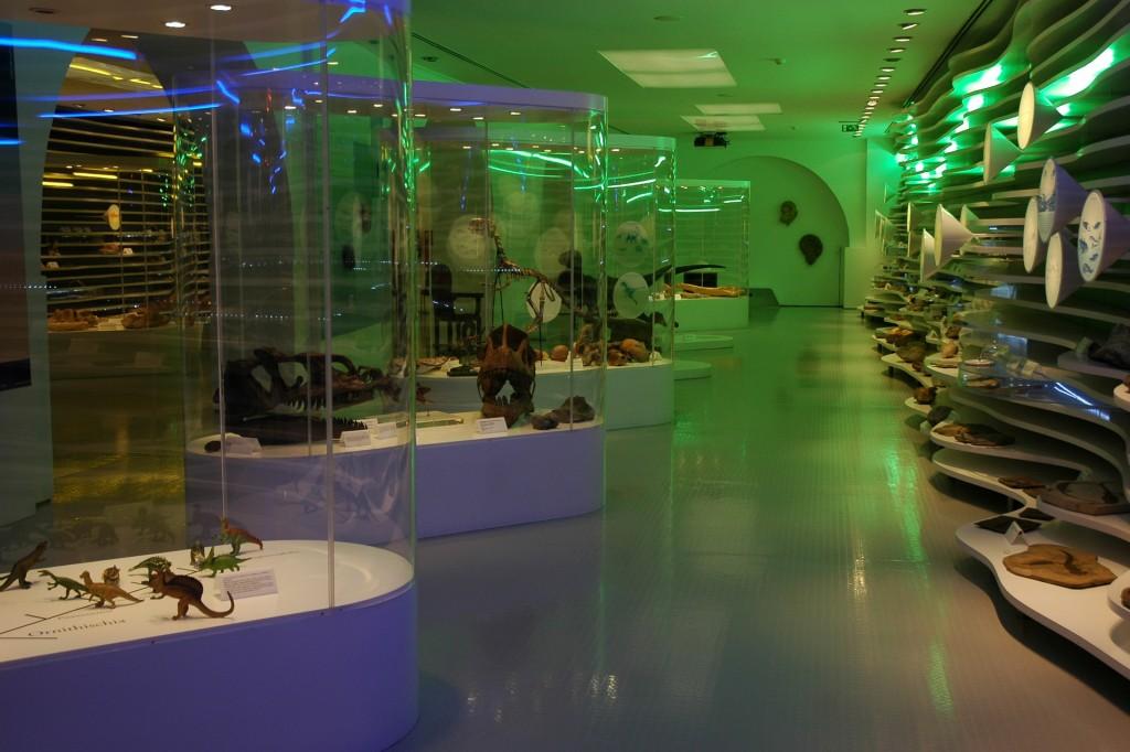 Museu de História Natural de Sintra - interior