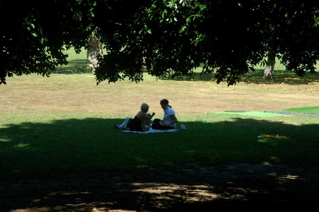 Jardins Parque Eduardo VII