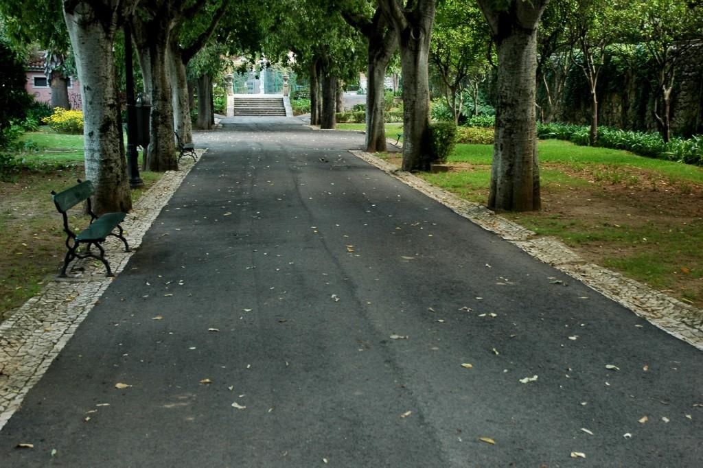 Saída do Jardim Municipal