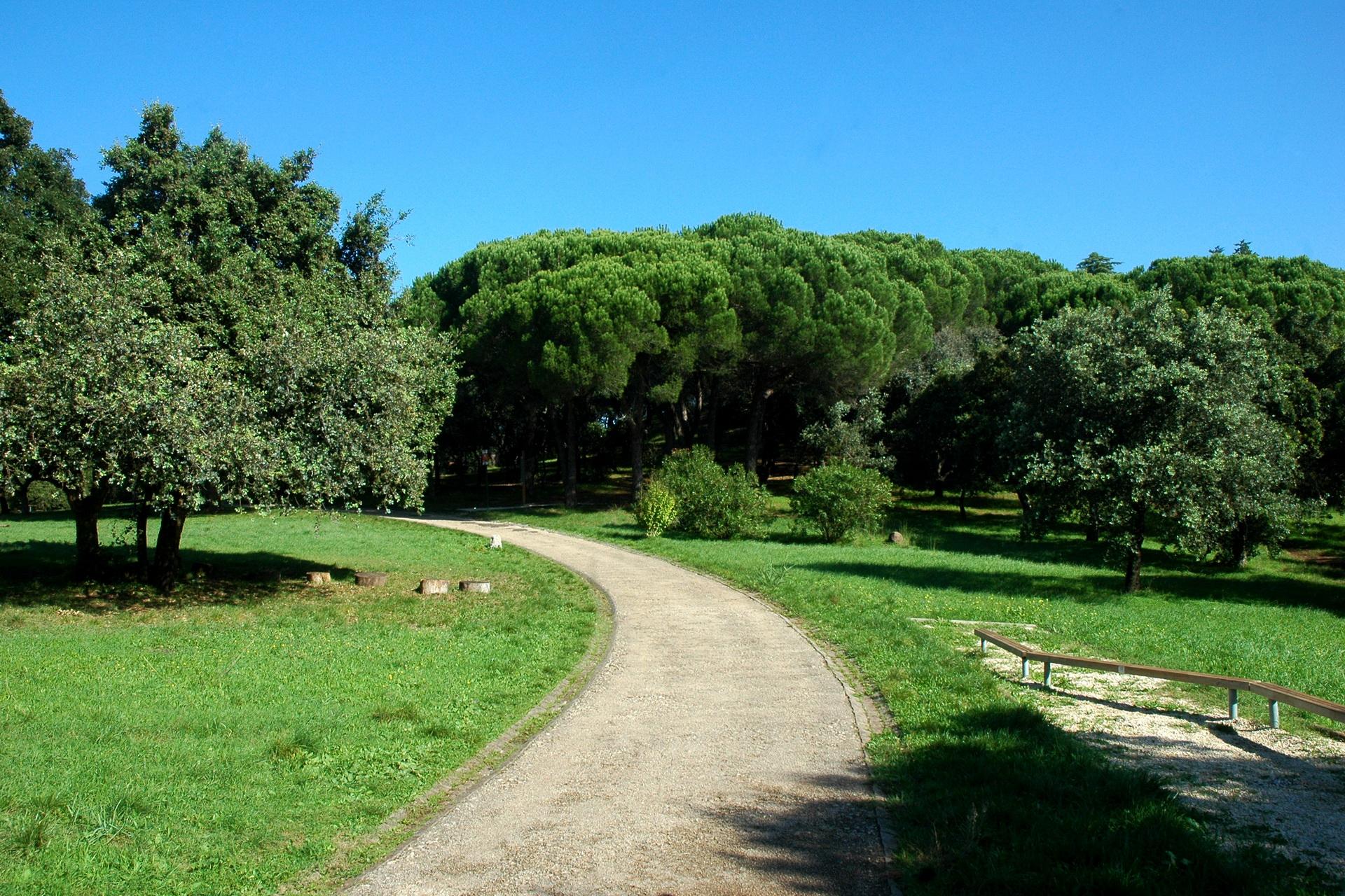 Parque Florestal De Monsanto O Pulm 227 O Verde De Lisboa Faz