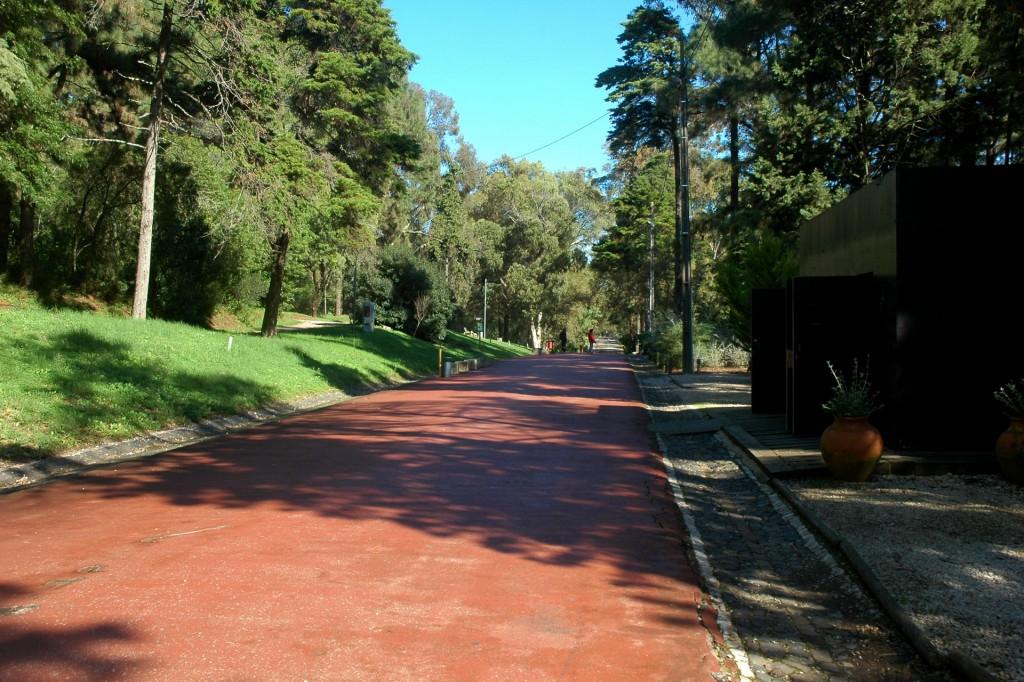 Avenida do Keil do Amaral